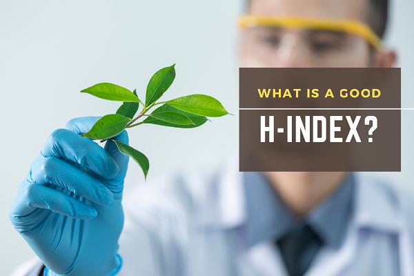 What is a good h-index?